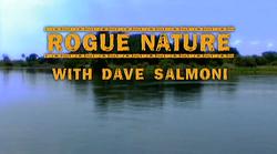 Rogue Nature_Dave Dalmoni