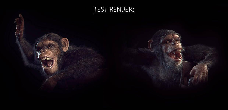 Test renders