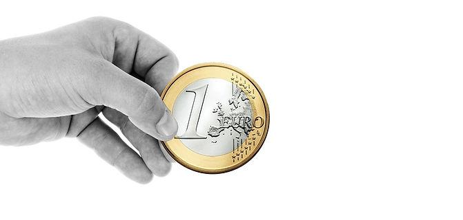 hand met euro.jpg