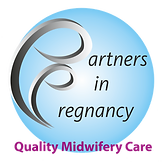 bg removedPartners In Pregnancy final lo