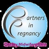 bg removedPartners In Pregnancy final lo