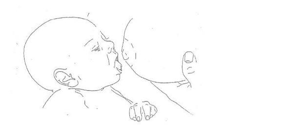 correct-latching-in-breastfeeding.jpg