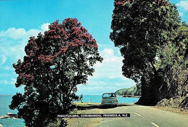 Pohutakawa coast new postcards 29 6 2018
