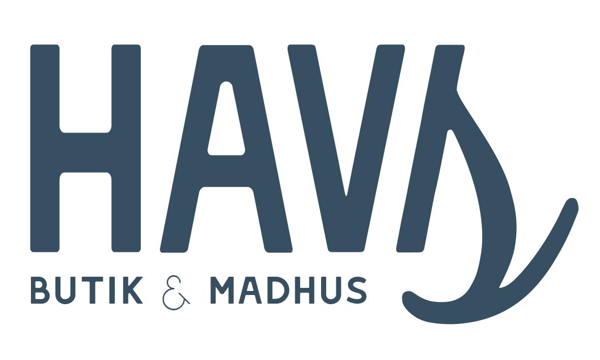 HAVS Logo design