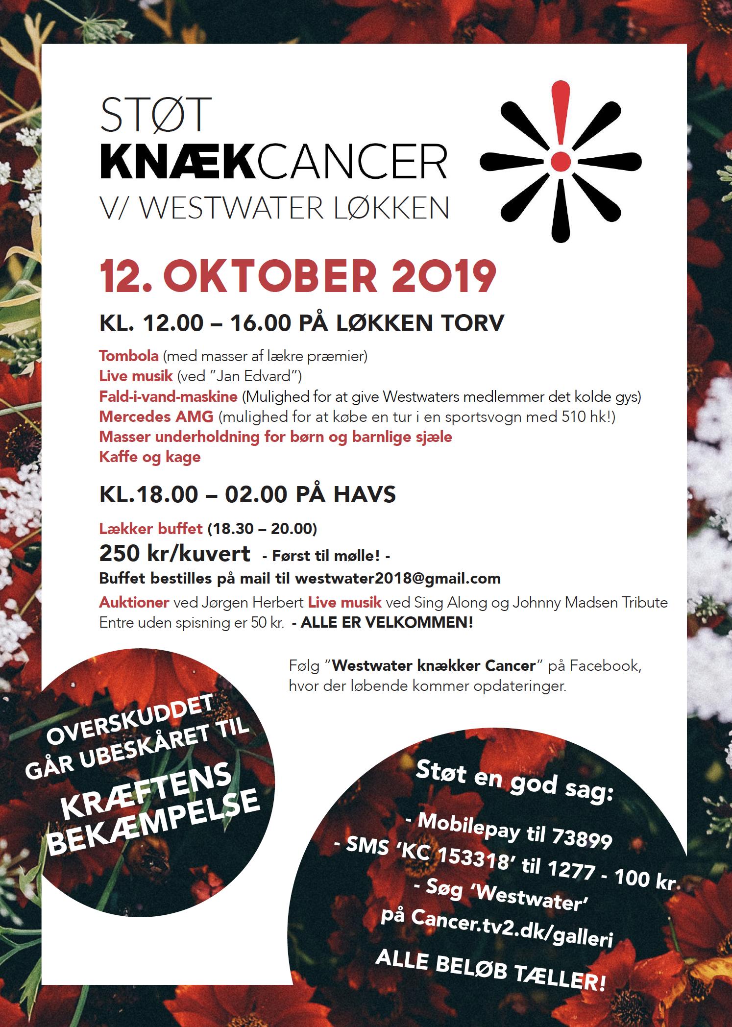 Frivilligt arbejde - Knæk Cancer Plakat