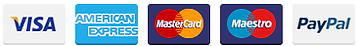 561-payment-card-icons (3).png