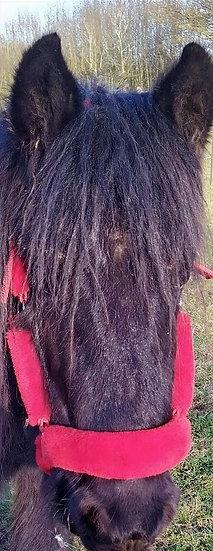 Bellissimo Faux Fur Headcollar - Red