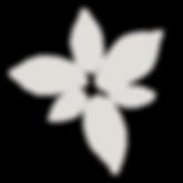 Logo Lohraza (5).png