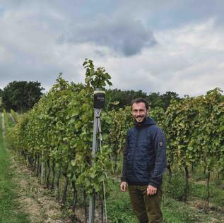 Prieler Winery Austria