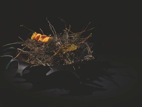 Luesma & Vega: Emotional tableware