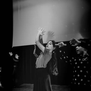 Flamenco-23.jpg