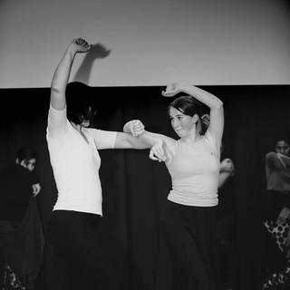 Flamenco-17.jpg