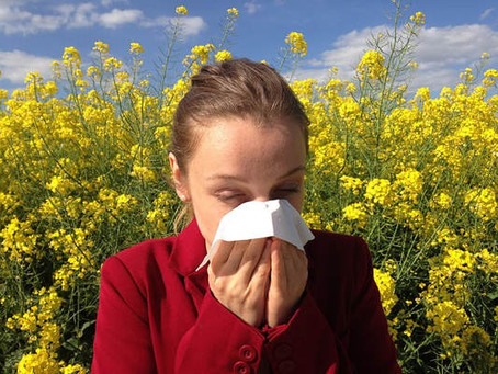Spring Allergies and Your Eyes: What You Need To Know