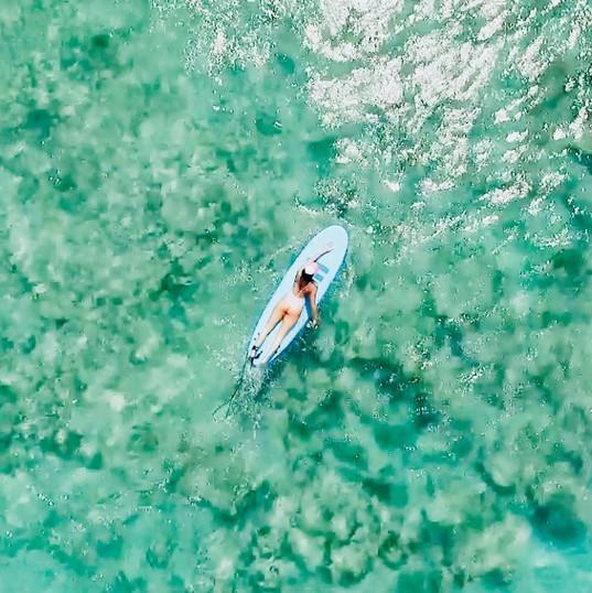 Ecole de Surf de Guadeloupe  Cours de surf + prise d'images en drone sur le spot du Helleux