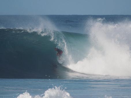 La newsletter de l'ecole de surf de Guadeloupe - Semaine 45 (4 au 10 Novembre)