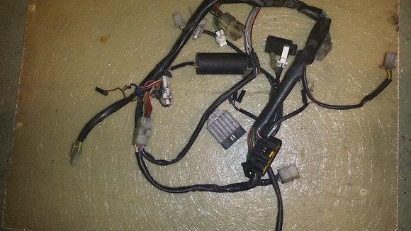 faisceau electrique complet HVA 450
