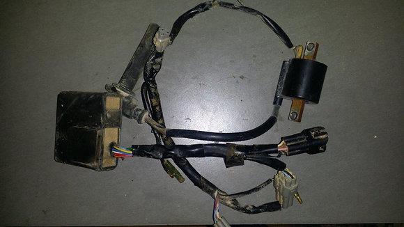 Faisceau Electrique yzf 400