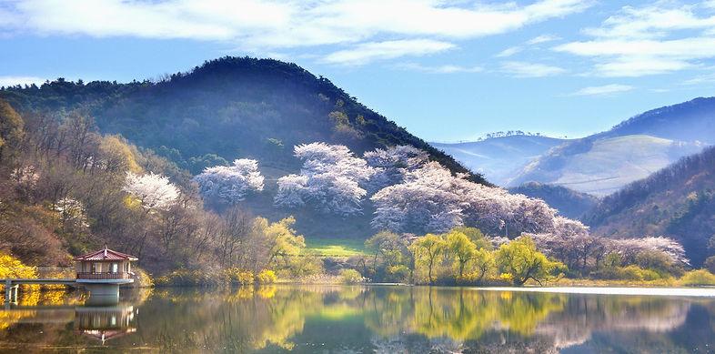韓國2.jpg