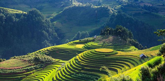 越南圖示.jpg