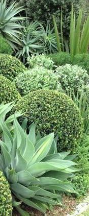 Nos jardins paysagés