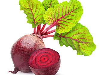 סלק -  ירק עשיר בחומרי רפואה