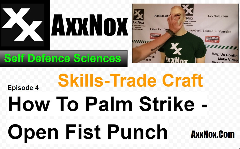 How To Palm strike-Open Fist Punch