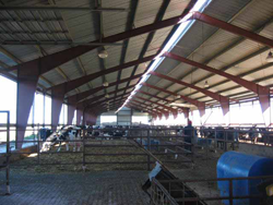 South Dakota Dairy