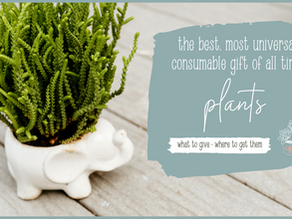 The best, most universal, consumable gift of all time: Plants!
