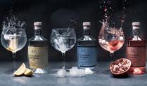 Gin Line Up (Seamless pano).jpg