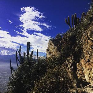 Cerro_Manquehue_run (54).JPG