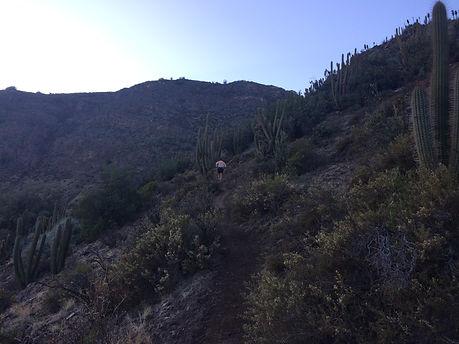 Cerro_Provincia_run (15).JPG