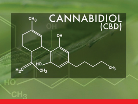 CBD Update: Covering More Commonly Asked Questions
