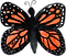 butterfly chuck.png