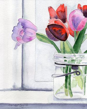 Jar of Tulips