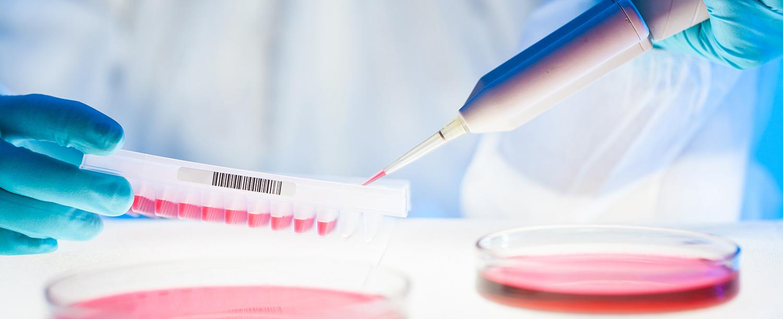 Mikrobiologie-slider1