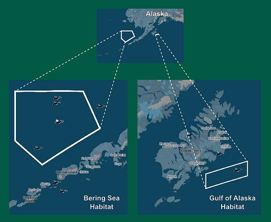 criticalhabitat-map-sightings.png