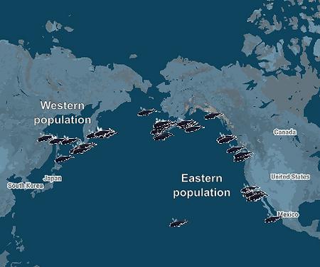 e-w-populations.png