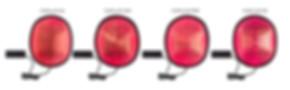 capillus 搭載レーザーの比較画像 sma.jpg