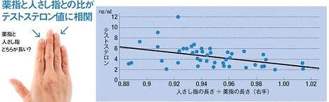 テストステロンレベル表