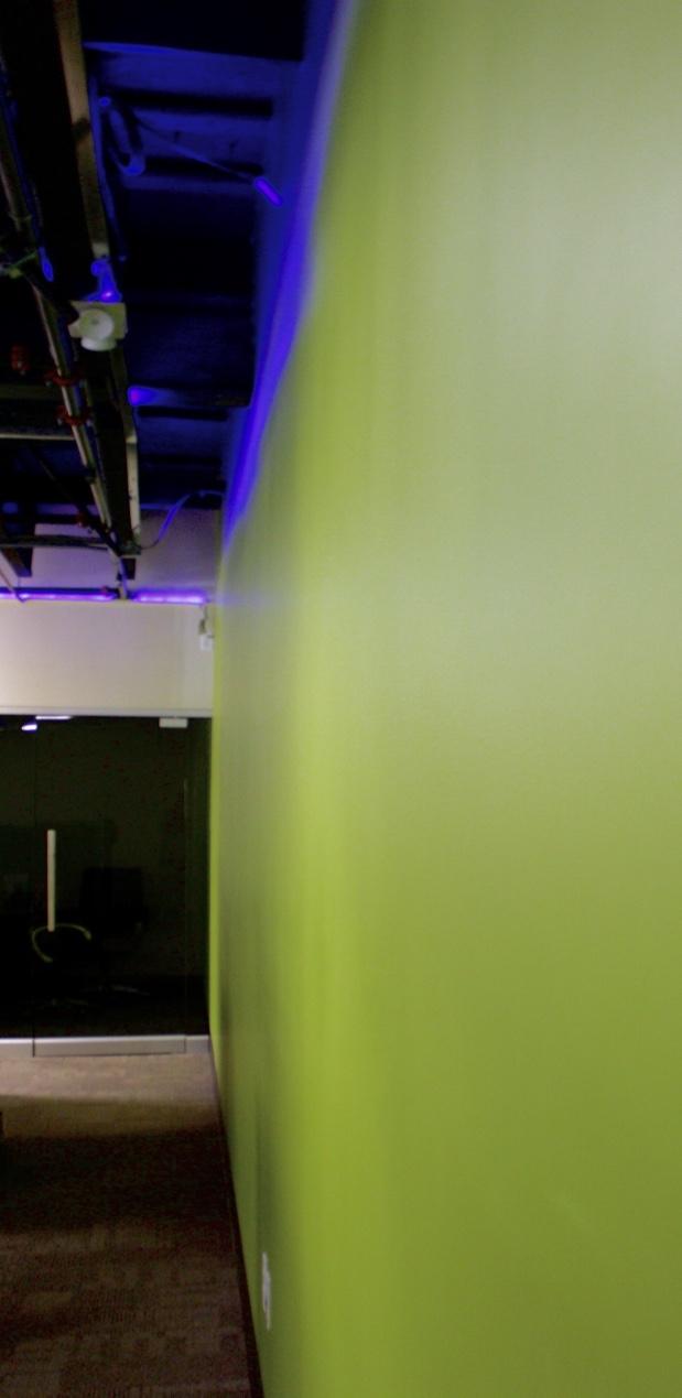Signature green wall