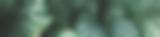 Screenshot 2018-06-19 17.01.03.png