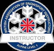 BASI Level 1 badge