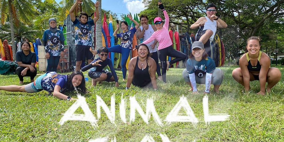 Animal Flow Interval @ Jalan Besar Swimming Complex