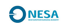 NESA-logo.jpg