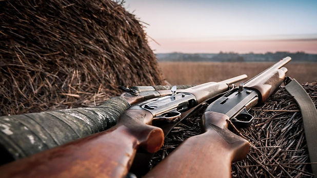 texas dove hunting packages.jpg
