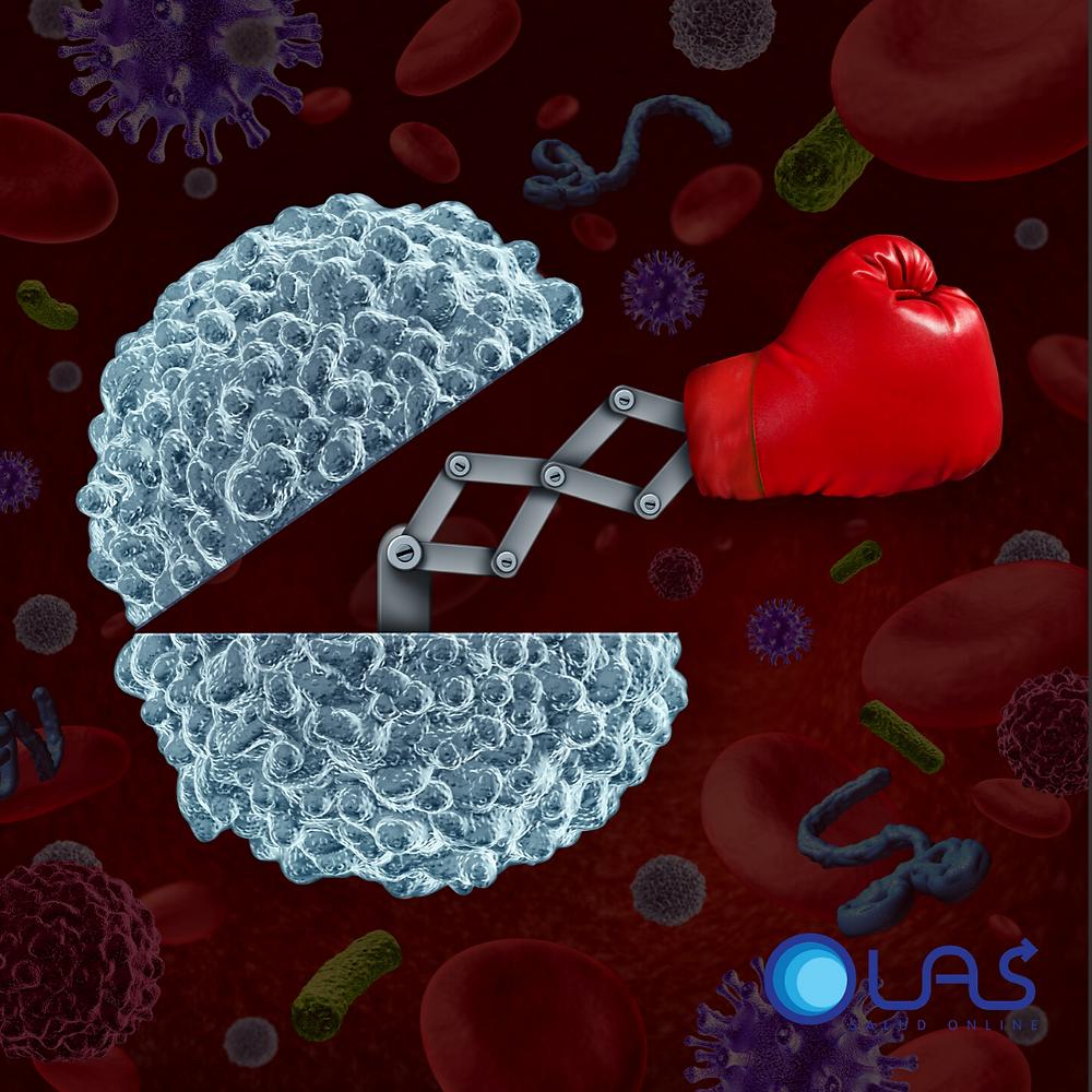 Nuestro sistema Inmune responde como nuestros ejercito