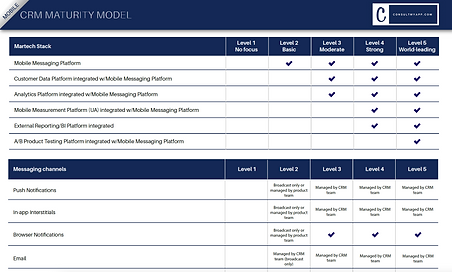 CRM Maturity Model.png
