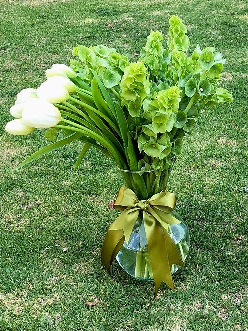 Tulipanes White