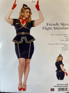 Friendly Skies Flight Attendant plus