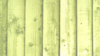 olive-fence-background_edited.jpg